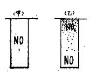 生活中的化学现象之褐烟的蔓延:褐烟的蔓延,这是怎么形成的?插图(2)