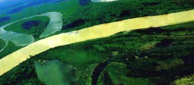 地球世界之最:世界上流域最广的河是哪条?——亚马孙河【附注音】插图(1)