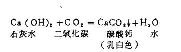 生活中的化学现象之清水变牛乳:清水变牛乳,到底是怎么回事?插图(2)