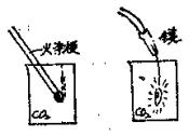 生活中的化学现象之在碳酸气里的燃烧:在碳酸气里的燃烧,这是什么回事?插图(1)