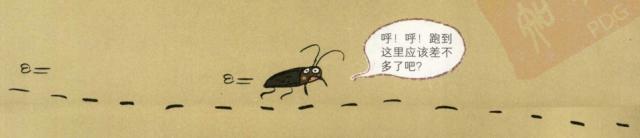 生活中的物理现象之加速度定律:嶂螂为什么跑得那么快插图(2)