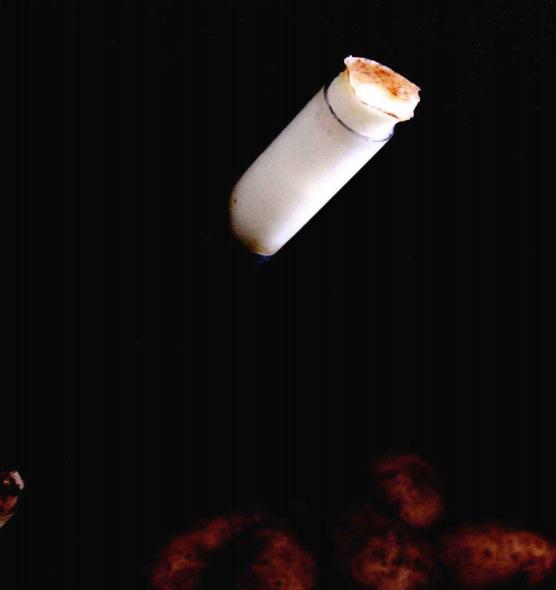 儿童科学小实验:穿透土豆的吸管【空气小实验】插图(4)