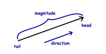 儿童物理知识 向量基础数学