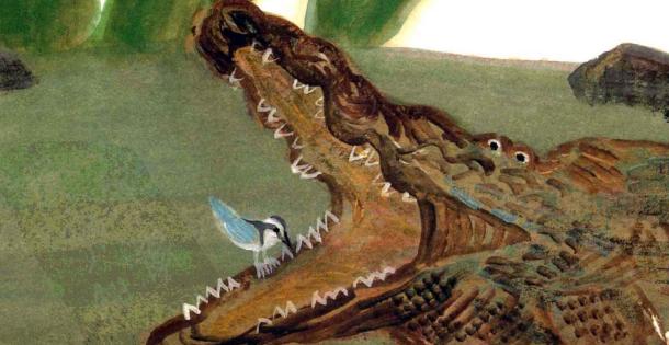 孩子想知道的趣味动物小知识:给鳄鱼清理牙齿的鳄鸟插图(1)