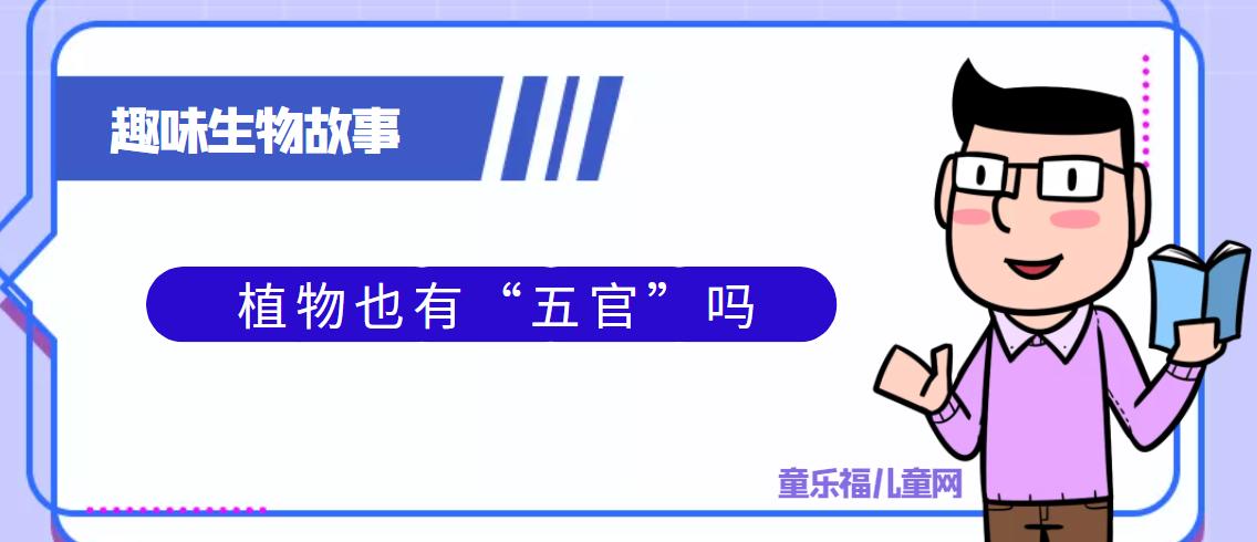 """趣味生物科普知识:植物也有""""五官""""吗插图"""