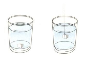简单的儿童物理小实验:巧化糖块【溶解小实验】