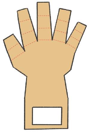 神经系统科技小制作:可抓握的机械手掌插图(1)