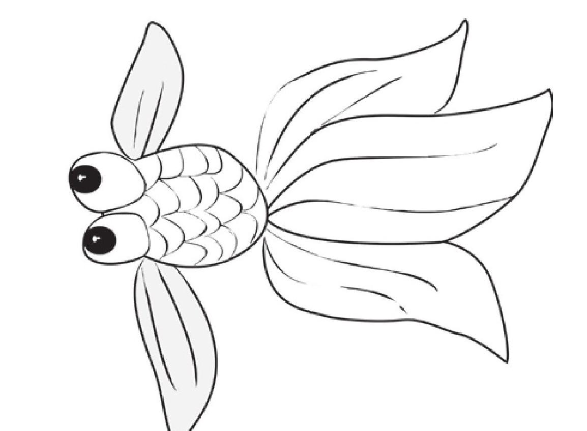 趣味生物科普知识:鱼的年龄是如何计算的——鳞片年轮插图(1)