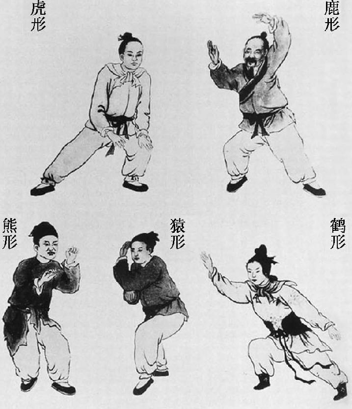 中国古代科学家的故事:华佗发明麻沸散插图(3)