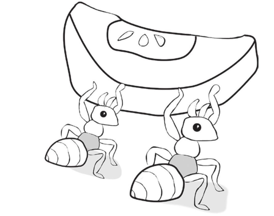 趣味生物科普知识:蚂蚁——当之无愧的大力士插图(1)