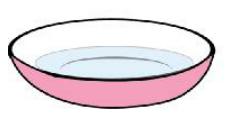 简单的儿童科学小实验:冲不走的乒乓球【压强小实验】