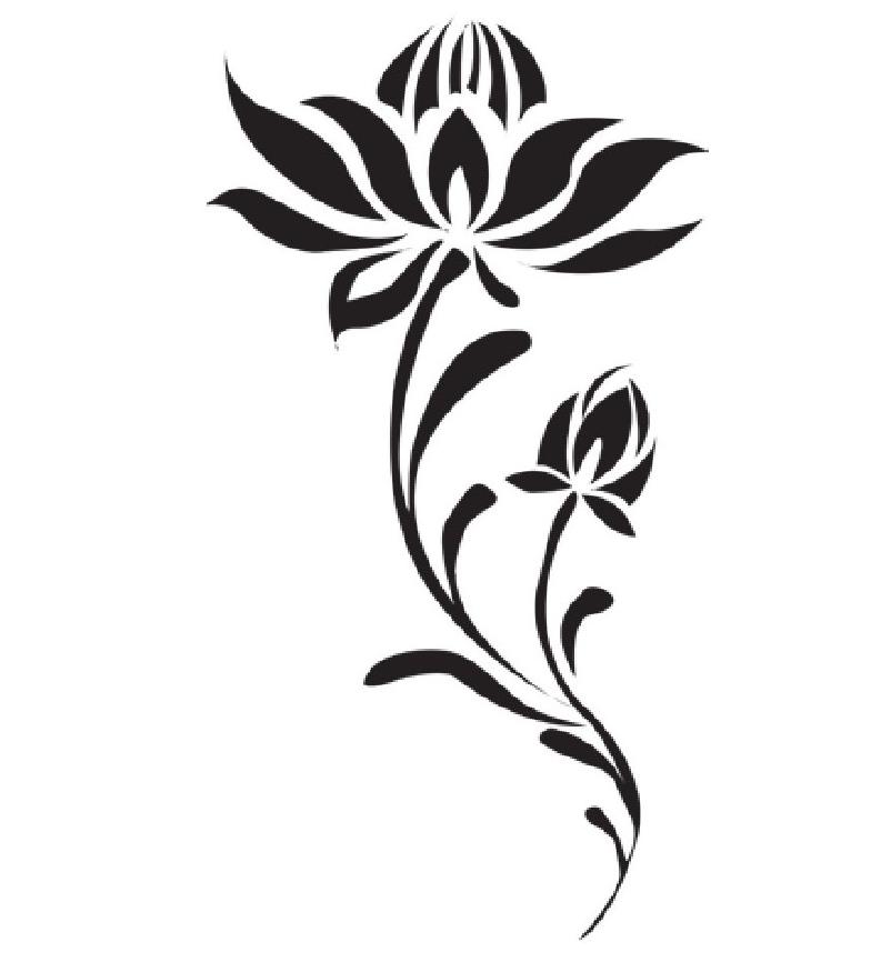 趣味生物科普知识:恶之花——罂粟虽美,危害多多插图(1)