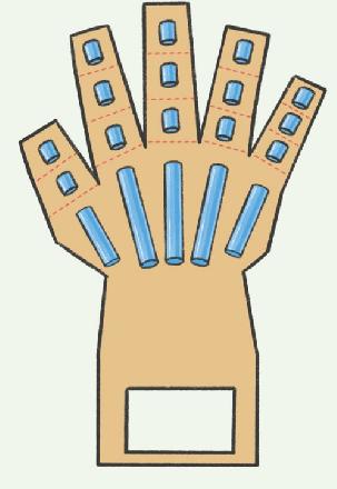 神经系统科技小制作:可抓握的机械手掌插图(2)