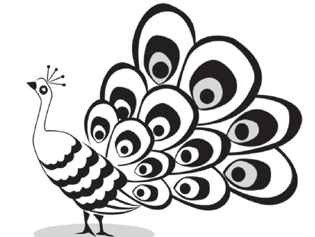 趣味生物科普知识:孔雀开屏为哪般?孔雀开屏的原因是什么?插图(1)
