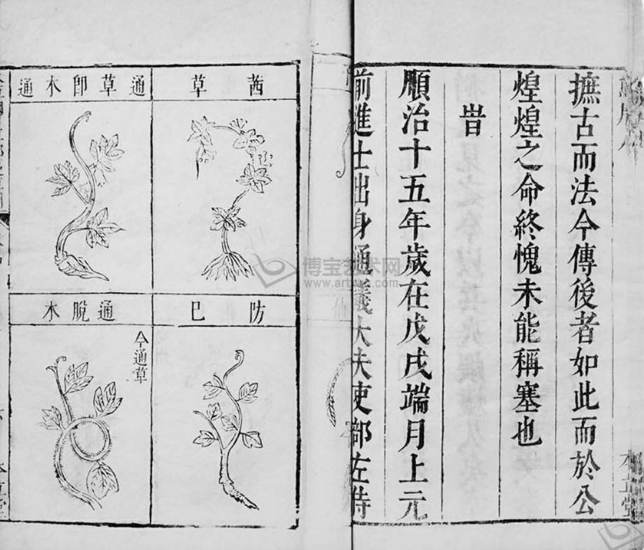 中国古代科学家的故事:李时珍尝毒草插图(1)