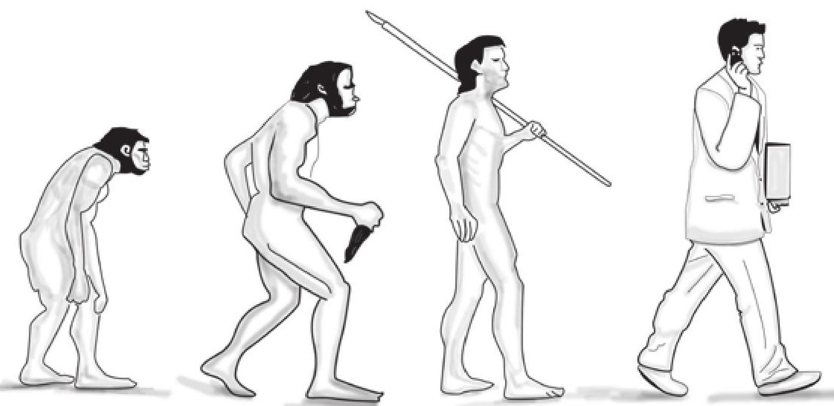 趣味生物故事:人类是如何进化的插图(1)