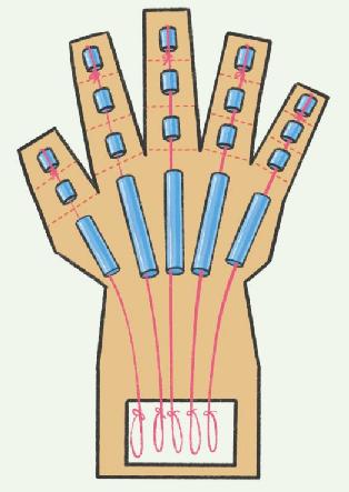 神经系统科技小制作:可抓握的机械手掌插图(3)