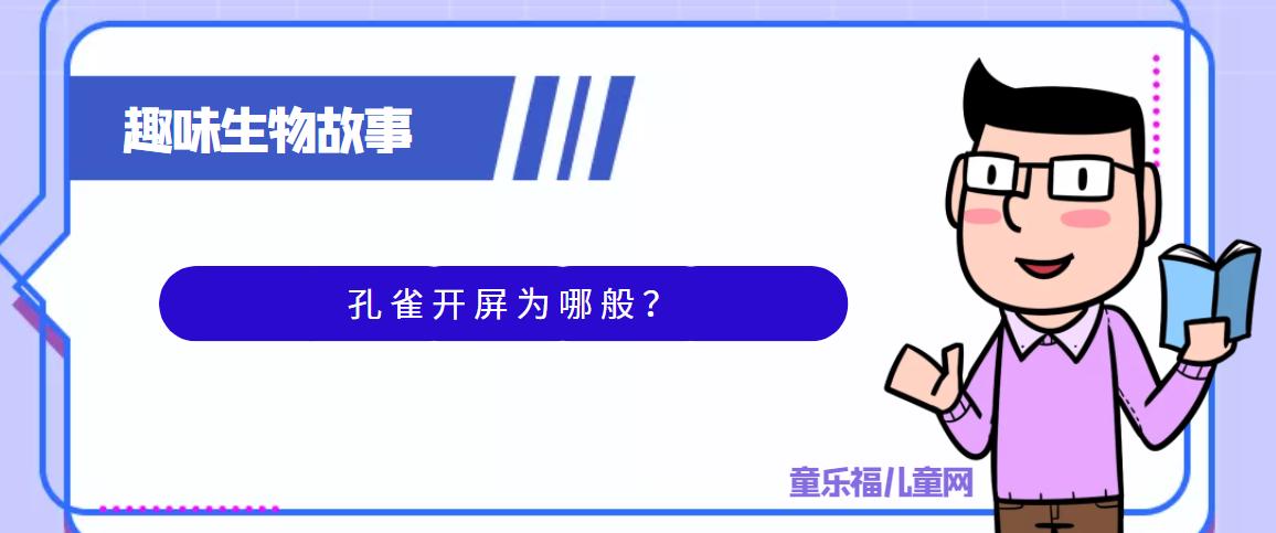 趣味生物科普知识:孔雀开屏为哪般?孔雀开屏的原因是什么?插图