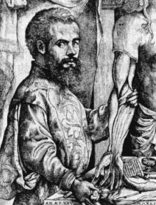 """人体解剖学的开山鼻祖竟然是一个""""小偷""""?插图(1)"""