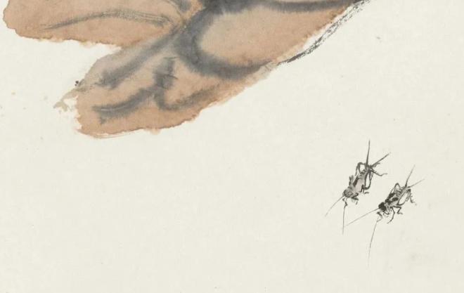中国名人故事:大器晚成的齐白石——齐白石的故事插图(1)