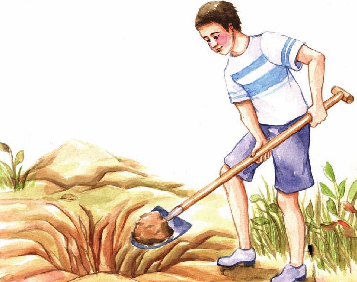 外国名人故事:自助者人助——球王贝利插图