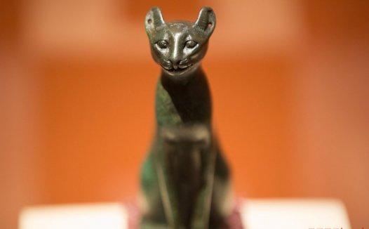 古埃及猫的地位有多高 为什么古埃及人崇拜猫?