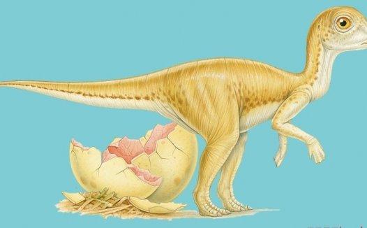 恐龙灭绝的原因 恐龙是怎么灭绝的