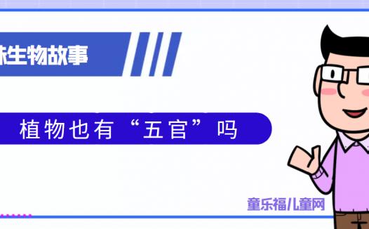 """趣味生物科普知识:植物也有""""五官""""吗"""