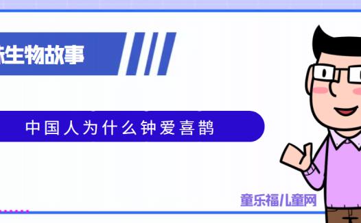 趣味生物科普知识:中国人为什么钟爱喜鹊