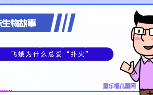 """趣味生物科普知识:飞蛾为什么总爱""""扑火"""""""