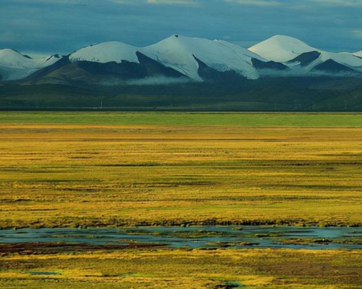 我国的四大高原是哪四个高原?其中黄土高原的范围占多少?