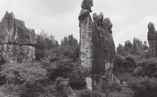 美丽的阿诗玛是一个人呢,还是一个景色优美的地方?(阿诗玛的故事)